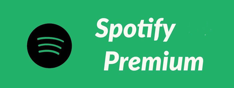 Spotify-premium-apkdl.io