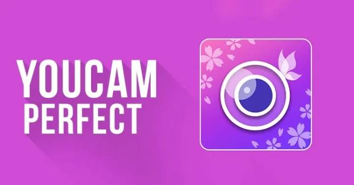 YouCam Perfect Premium APK